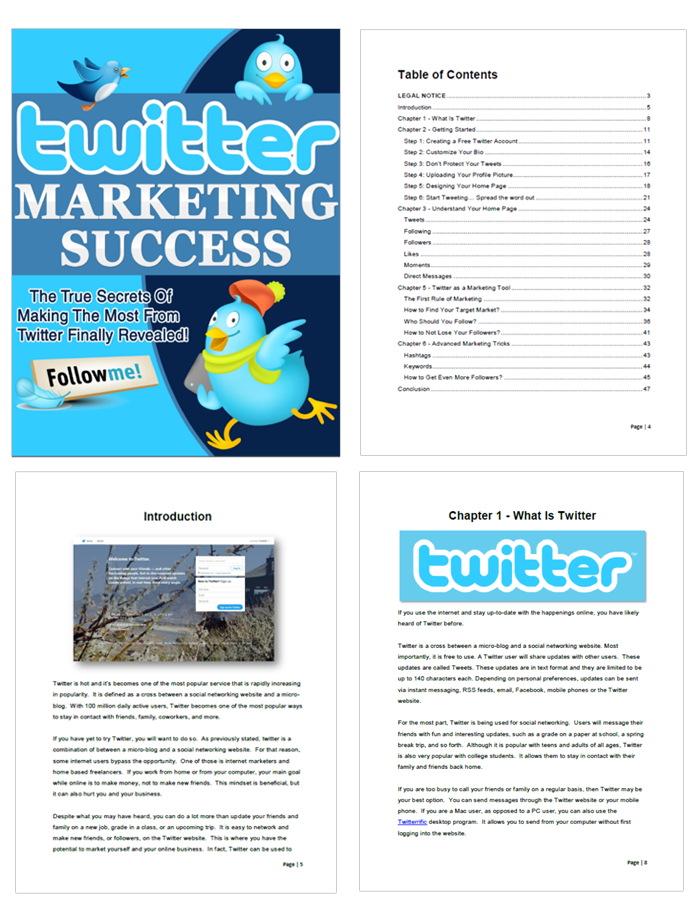 Twitter Marketing Success Ebook Chapters