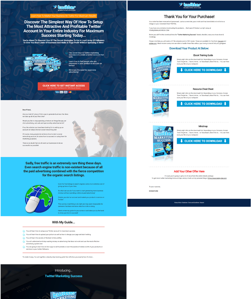 Twitter Marketing Success Mini Site Preview