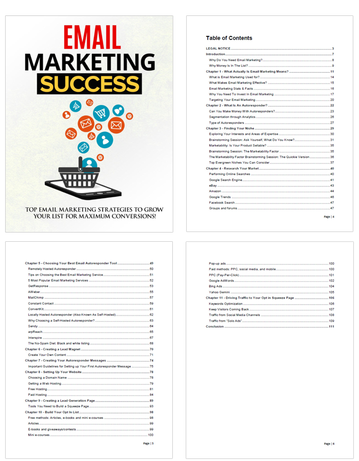 Email Marketing Success Ebook Chapters Preview